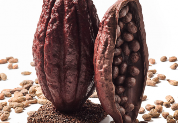 Les figures de xocolata del Celler de Can Roca,  en exclusiva al Colmado Giner